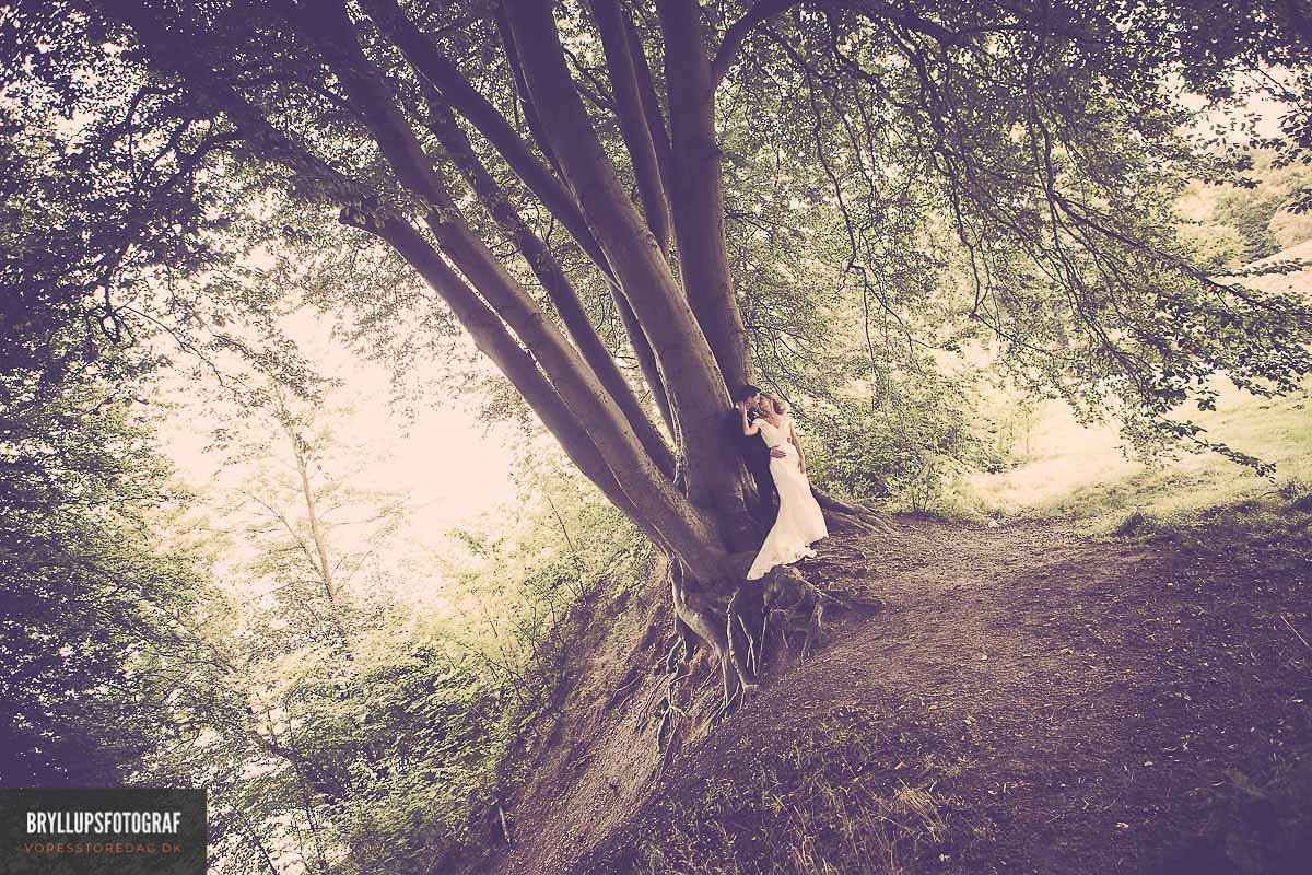 Choosing the Right Wedding Package